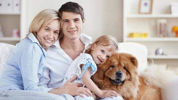Wills & Trusts dog-young-family Direct Wills Batley